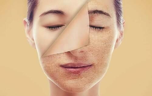 Hạt sen có tác dụng chống lão hóa